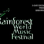 Selected Bloggers @ RWMF 2012 announced